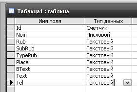 Рис. 3. Поля и тип данных таблицы