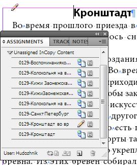 incopy019