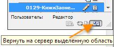 incopy027